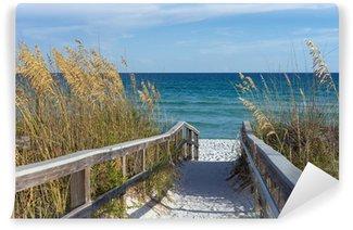 Papier Peint Vinyle Promenade sur la plage avec des dunes et de l'avoine de sable