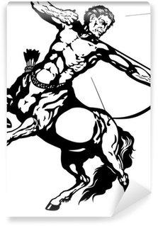 Papier Peint Vinyle Sagittaire blanc noir