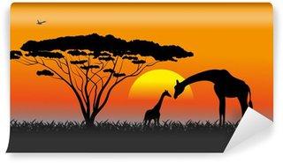 Papier Peint Vinyle Savane africaine un paysage de soirée