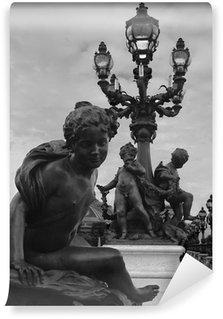 Papier Peint Vinyle Statue et lampadaire, paris (noir et blanc)