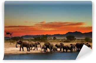 Papier Peint Vinyle Troupeau d'éléphants dans la savane africaine