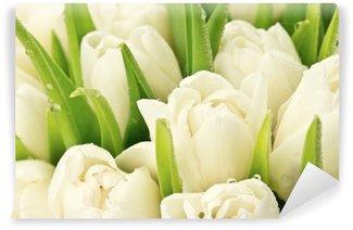 Papier Peint Vinyle Tulipany