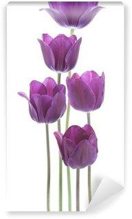 Papier Peint Vinyle Tulipe