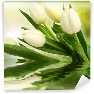 Papier Peint Vinyle Tulipes blanches