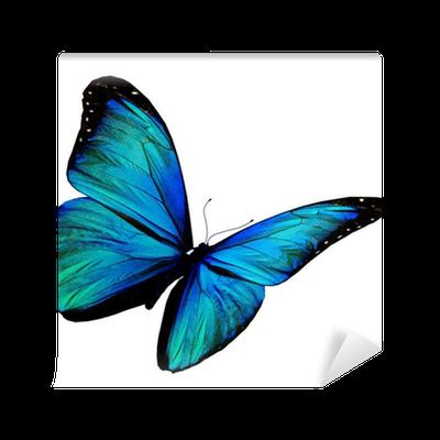 papier peint turquoise papillon volant isol sur fond. Black Bedroom Furniture Sets. Home Design Ideas
