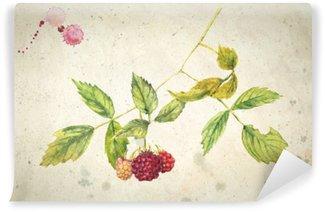 Papier Peint Vinyle Une branche de framboise - peinture à l'aquarelle réaliste. Le millésime fond beige.