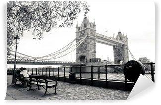 Papier Peint Vinyle Une vue en noir et blanc de Tower Bridge