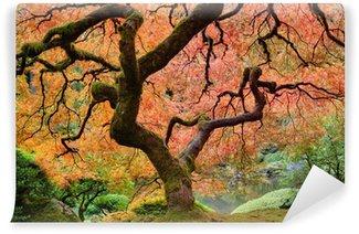 Papier Peint Vinyle Vieil arbre d'érable japonais à l'automne