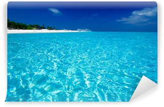 Papier Peint Vinyle Vue sur l'océan de l'île paradisiaque