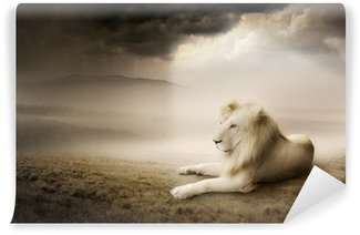 Papier Peint Vinyle White lion au coucher du soleil