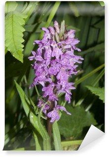 Papier Peint Vinyle Wild Orchid