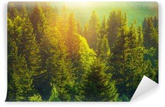 Kesä alppimetsässä Pesunkestävä Valokuvatapetti