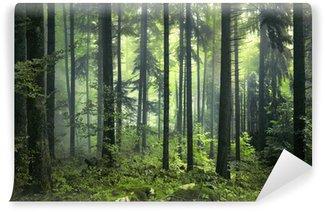 Salaperäinen tumma metsä Pesunkestävä Valokuvatapetti