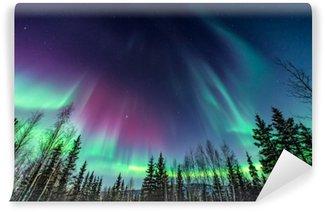 Violetti ja vihreä aurora / pohjoiset valot puiden reunaan Pesunkestävä Valokuvatapetti