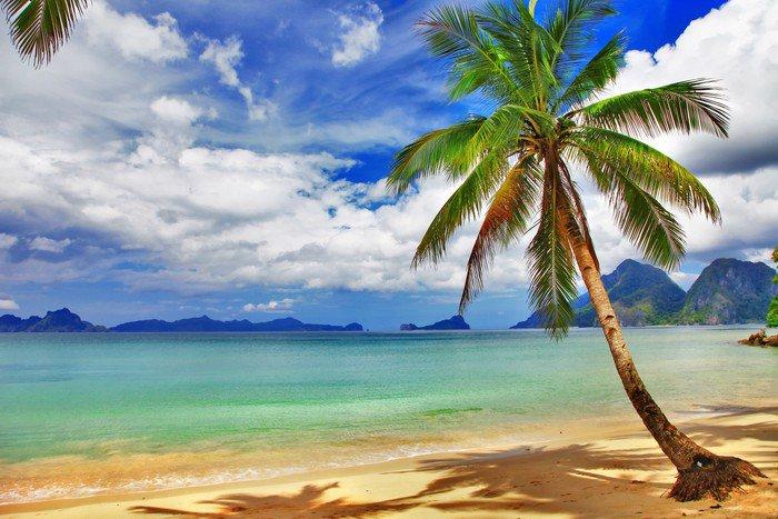 Kwadryptyk Piękna sceneria tropikalnych relaks - Tematy