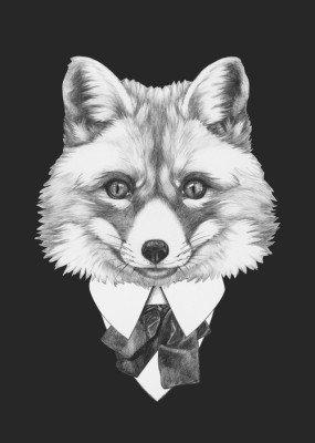 Portræt af Fox i kulør. Håndtegnet illustration. Plakat