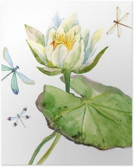 Plakát Akvarel lotosový květ