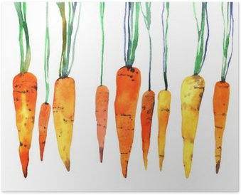 Plakát Akvarel ručně malovaná mrkev