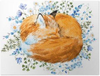 Plakát Akvarel spací fox