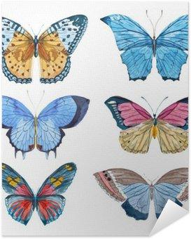 Plakát Akvarel vektor motýli