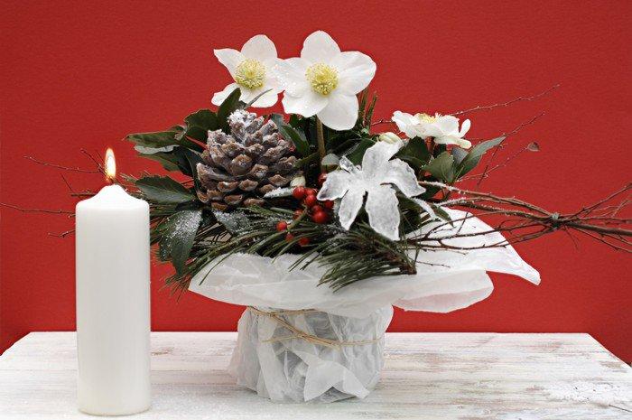 Plakát Aranžmá s vánoční Rose - Mezinárodní svátky