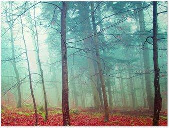 Plakát Barevné mystické podzimní stromy