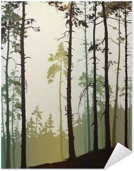 Plakát Bor