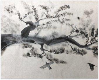 Plakát Borovice větev