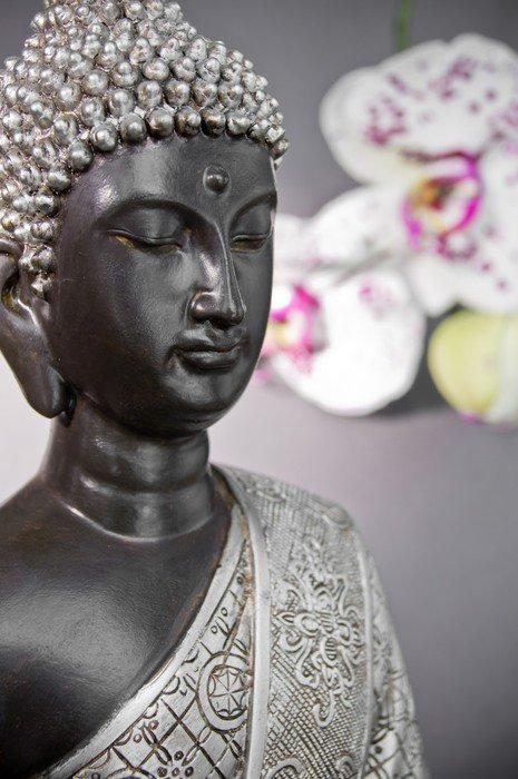 Plakát BuddhaCloseUp - Témata