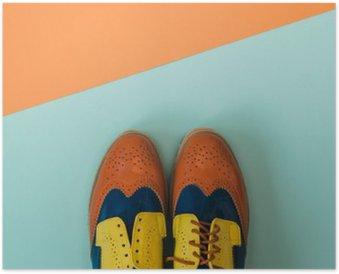 Plakát Byt Dispozice módní set: barevné ročník boty na barevném pozadí. Pohled shora.