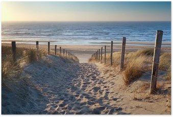 Plakát Cesta na severní pláži u moře ve zlatě slunci