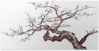 Plakát Cherry tree