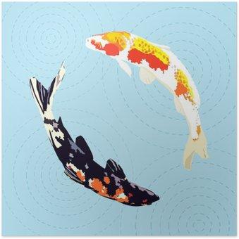 Plakát Čínština kapr, japonské koi ryby, vektorové ilustrace