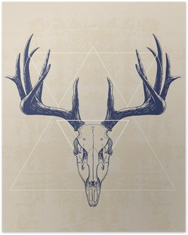 Plakát deer skull