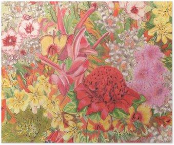 Plakát Divokých květin. Australští domorodci. Colorfu kresba tužkou.