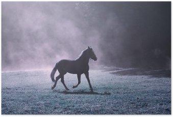 Plakát Fantasy ranní slunce louka s hnědým koně a fialovou mlhou.