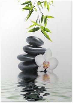 Plakat HD Biała orchidea kwiat bambusa końca