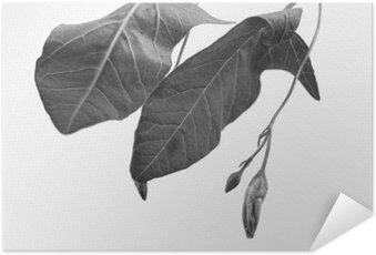 Plakát HD Černá a bílá macrophoto objektu elektrárny s hloubkou ostrosti
