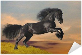 Plakat HD Czarne konie fryzyjskie galopuje w zachodzie słońca