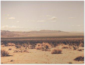 Plakát Jižní Kalifornie Desert