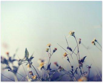 Plakát Klasická fotografie přírodní pozadí s divokými květinami a jinými rostlinami