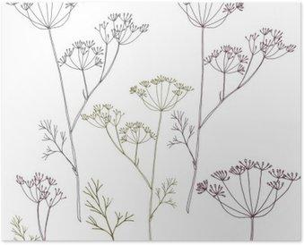 Plakát Kopru nebo fenyklu květy a listy.