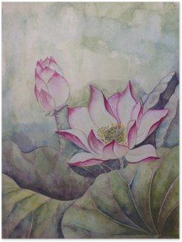 Plakát Krásné kvetoucí lotos
