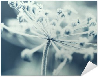 Plakát Květ