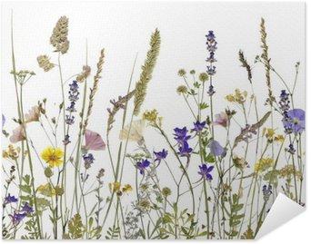 Plakát Květiny a bylinky. Pro ilustraci lze bez problémů připojit horizontálně