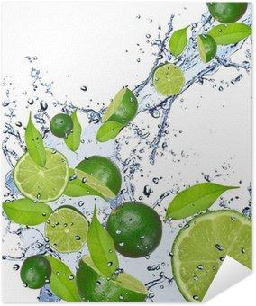 Plakát Limes, které spadají do stříkající vodě, izolovaných na bílém pozadí