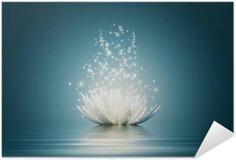 Plakát Lotus Flower