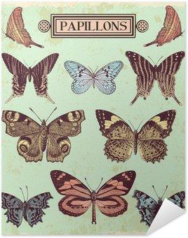 Plakát Motýli