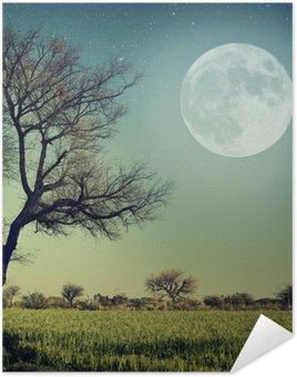 Plakat Natura-68