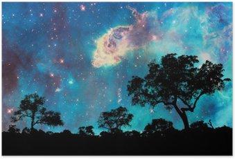 Plakát Noční krajina se siluetou stromy a hvězdné noci